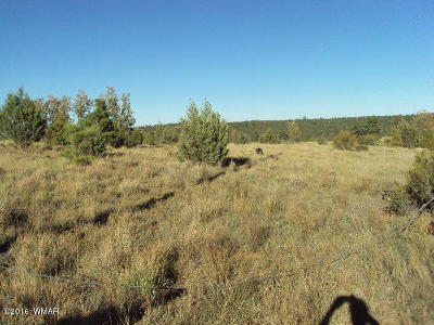 Heber Residential Lots & Land For Sale: 1816 Crest Road