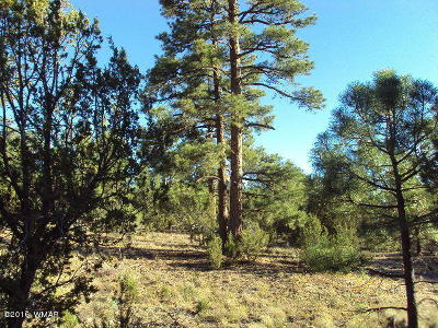 Heber AZ Residential Lots & Land For Sale: $125,000