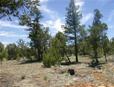 Heber AZ Residential Lots & Land For Sale: $69,000
