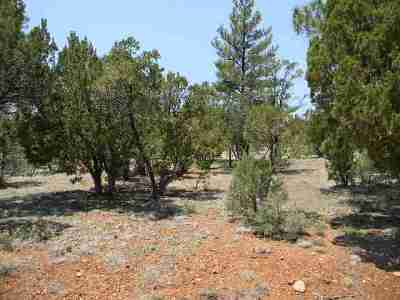 Residential Lots & Land For Sale: 2760 Jaguar Circle