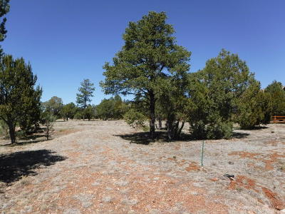 Overgaard AZ Residential Lots & Land For Sale: $119,900