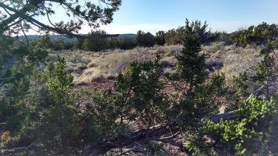 Snowflake Residential Lots & Land For Sale: 4290 Bunkhouse Road