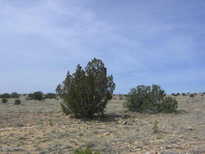 Overgaard Residential Lots & Land For Sale: Lot 446 Chevelon Canyon Ranch