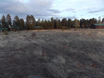 Overgaard AZ Residential Lots & Land For Sale: $44,900