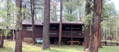 Greer Single Family Home For Sale: 16 Acr 1323