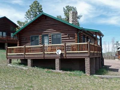 Greer Single Family Home For Sale: 44 Main Street