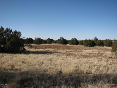 Overgaard Residential Lots & Land For Sale: Lot 297 Chevelon Canyon Ranch #3