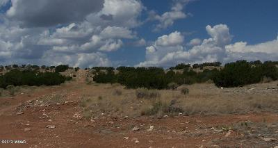 Overgaard Residential Lots & Land For Sale: Lot 457 Chevelon Canyon Ranch #3