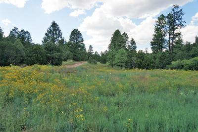 Heber Residential Lots & Land For Sale: Tbd Black Canyon Rd