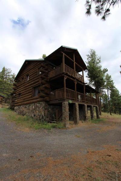 Greer Single Family Home For Sale: 505 1122