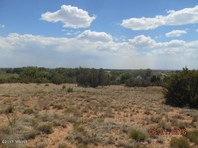 Snowflake Residential Lots & Land For Sale: 9435 Miller Trail