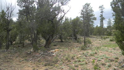 Heber Residential Lots & Land For Sale: 3350 Stone Bridge Trail