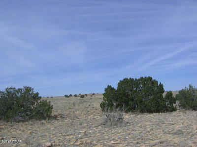 Overgaard Residential Lots & Land For Sale: Lot 367 Chevelon Canyon Ranch #3