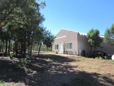 Navajo County Single Family Home For Sale: 5421 &5425 Brindle Bull Lane