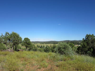 Navajo County Residential Lots & Land For Sale: Tbd Pinedale Road