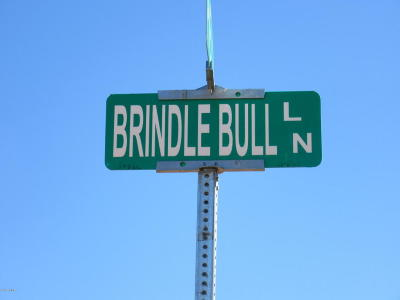 Navajo County Residential Lots & Land For Sale: 5426 Brindle Bull Road