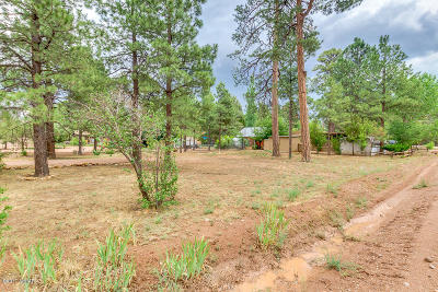 Overgaard Residential Lots & Land For Sale: 2049 Grey Squirrel Trail