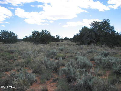 Overgaard Residential Lots & Land For Sale: Lot 251 Chevelon Canyon Ranch #2