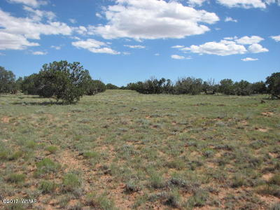 Overgaard Residential Lots & Land For Sale: Lot 252 Chevelon Canyon Ranch #2