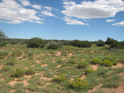 Overgaard Residential Lots & Land For Sale: Lot 254 Chevelon Canyon Ranch #2