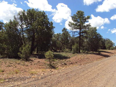 Clay Springs AZ Residential Lots & Land For Sale: $69,000