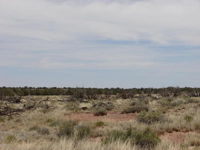 Snowflake Residential Lots & Land For Sale: 5081 Raven