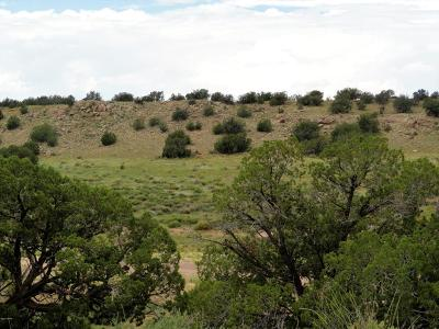 Overgaard Residential Lots & Land For Sale: Lot 107 Chevelon Canyon Ranch #1