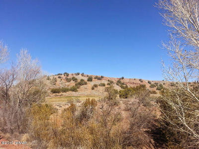 Snowflake Residential Lots & Land For Sale: 1510 W Lariat Lane