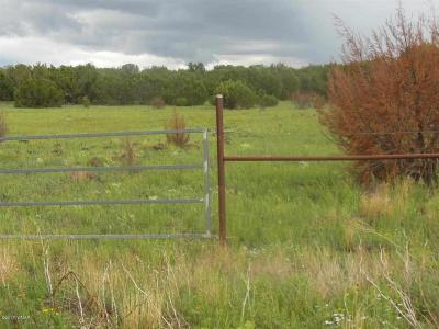 Lakeside Residential Lots & Land For Sale: 1.45 Acres Woodland Road