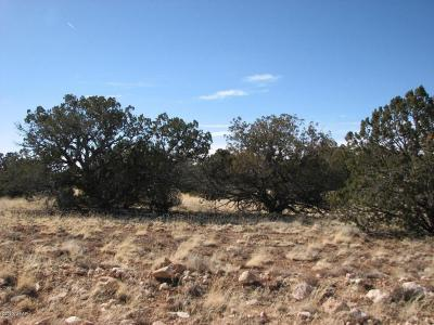 Overgaard Residential Lots & Land For Sale: Lot 507 Chevelon Canyon Ranch #3