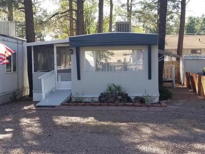 Navajo County Manufactured Home For Sale: 1664 Ponderosa Lane Unit #94 #94