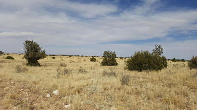 Heber Residential Lots & Land For Sale: Lot 771 Chevelon Canyon Ranch #6