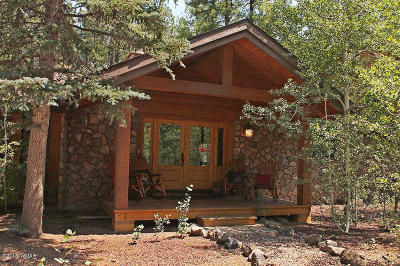 Pinetop Single Family Home For Sale: 2867 Aspen Loop