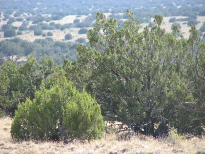 Overgaard Residential Lots & Land For Sale: Lot 290 Chevelon Canyon Ranch #3