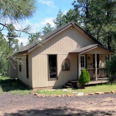 Overgaard Single Family Home For Sale: 2001 Judy Ranch Road