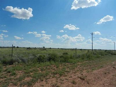 Snowflake Residential Lots & Land For Sale: 8723 E Concho Highway