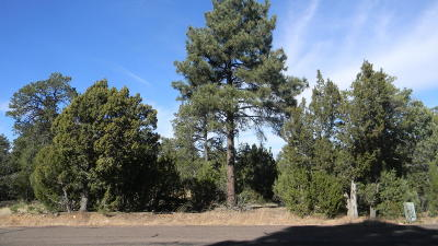 Heber Residential Lots & Land For Sale: 1550 Mainline Road