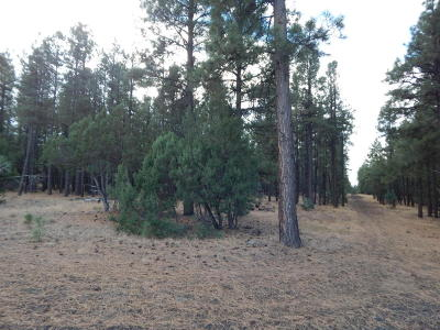 Lakeside Residential Lots & Land For Sale: 9351 Thunder Horse Road