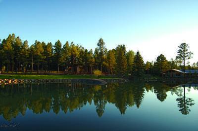 Pinetop Residential Lots & Land For Sale: 9585 Sierra Springs Drive