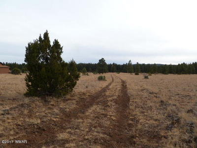 Lakeside Residential Lots & Land For Sale: 9341 Mountain Meadow Lane