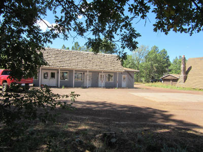 Pinetop Commercial For Sale: 13a W White Mountain Boulevard