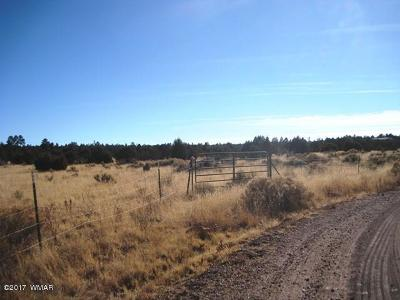 Overgaard AZ Residential Lots & Land For Sale: $198,875