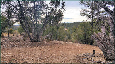 Heber Residential Lots & Land For Sale: 2926 Deer Hill Road