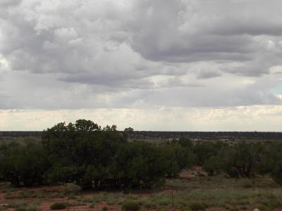 Concho AZ Residential Lots & Land For Sale: $19,900