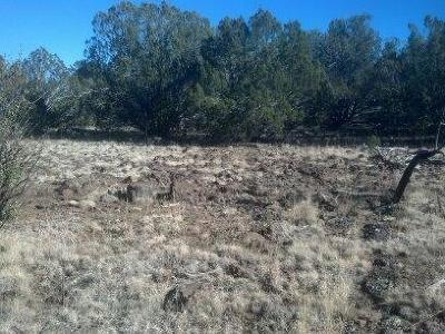 Navajo County Residential Lots & Land For Sale: Lot 163 Kb Ranch Road