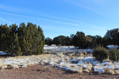 Show Low Residential Lots & Land For Sale: 1825 Howard