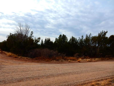 Show Low Residential Lots & Land For Sale: 1988 Tee Street