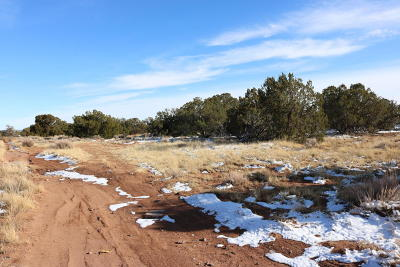 Snowflake Residential Lots & Land For Sale: 2971 W Bryant