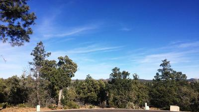 Navajo County Residential Lots & Land For Sale: 575 E Middle Mountain Lane
