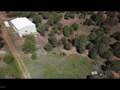 Clay Springs Single Family Home For Sale: 5015 Highway 260